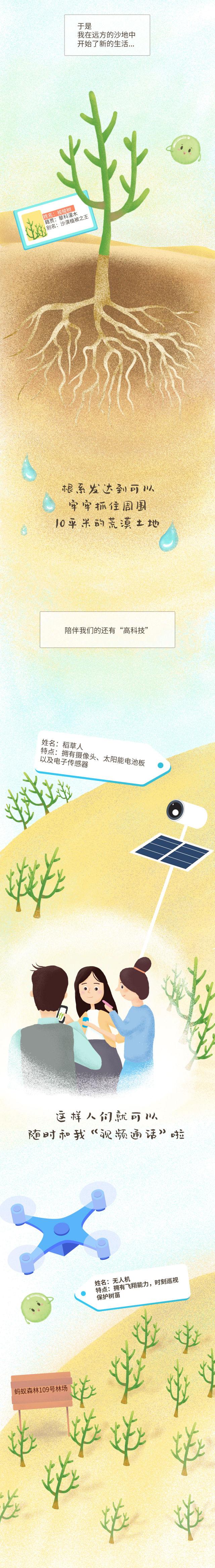 一颗能量球的奇妙旅行