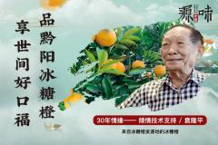 助力深度产业扶贫 中粮我买网携手源味中国推出优选